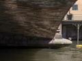 Sous les ponts - 7